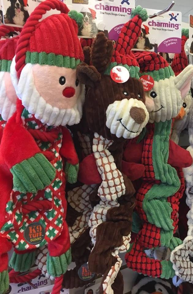Christmas2017-26.jpg