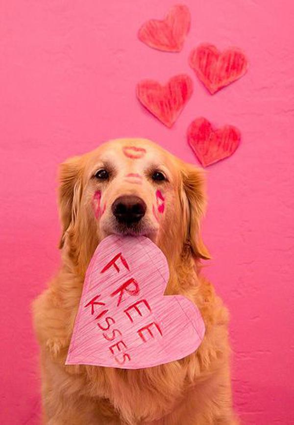 Valentine 2018 free kisses.jpg