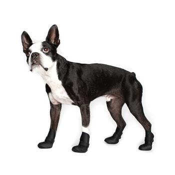 Wellies - Wellies are flexible silicone dog boots that are easy to put on and stay on! - Wellies are the all-weather boot solution that protects your pooch's paws from the elements.  They are perfect for rainy, muddy spring weather as well as sloppy winter weather.