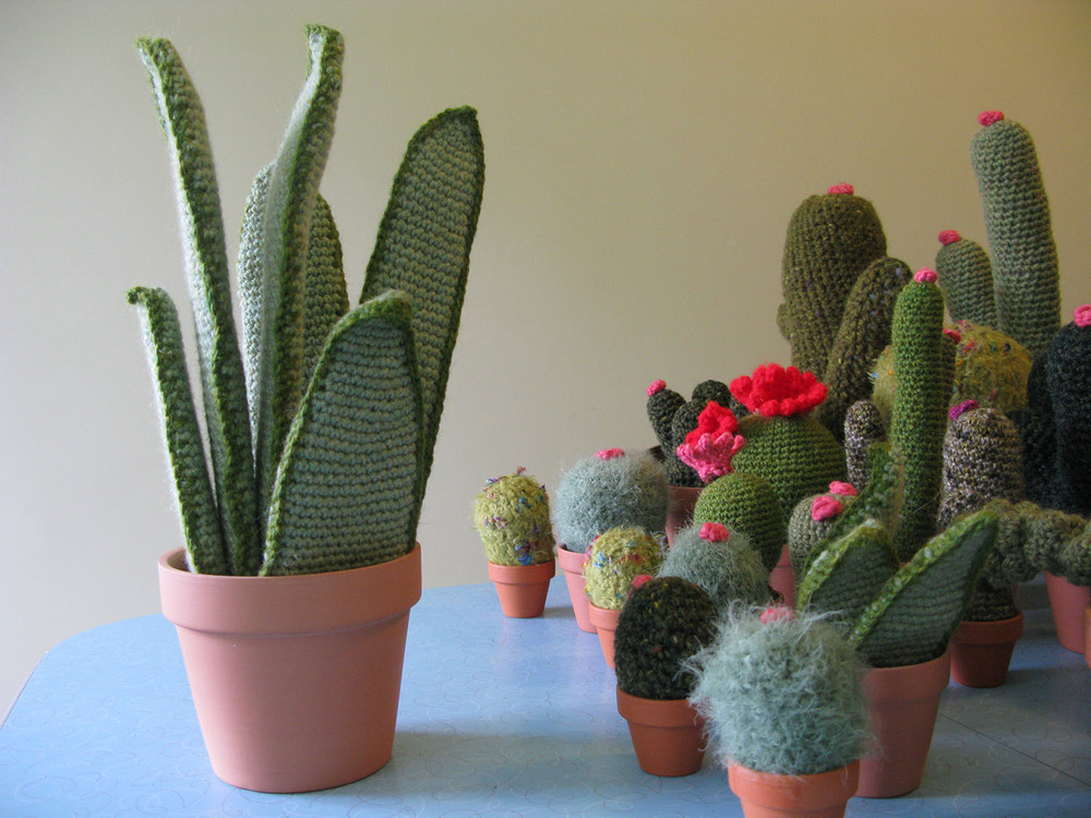 plants_main.jpg