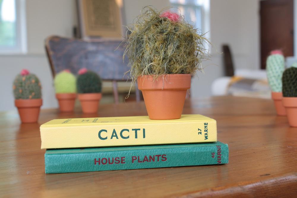 cacti011.jpg