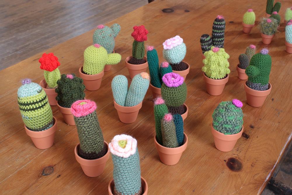 cacti012.jpg