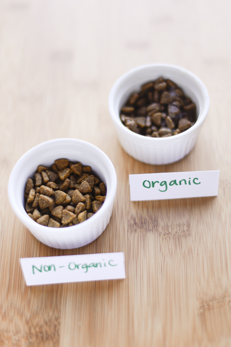 to go organic or not? - pet food
