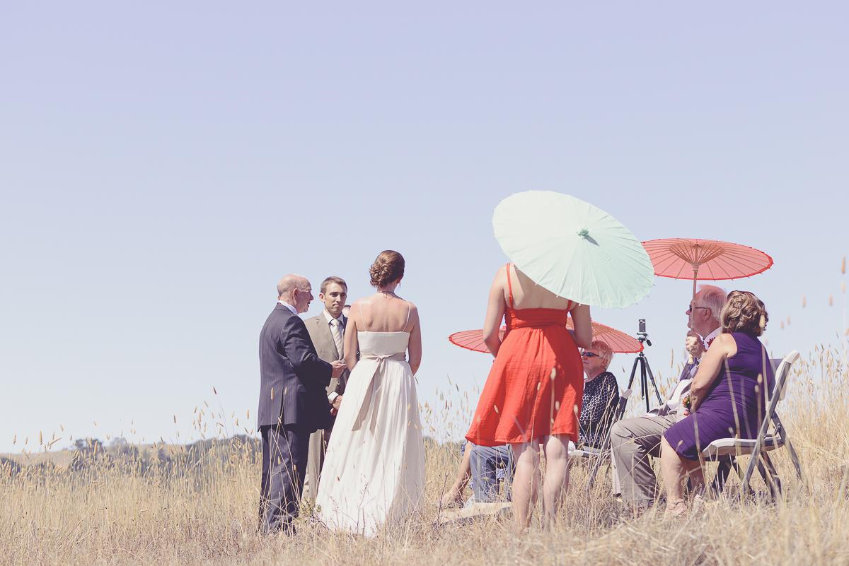 northern california weddings