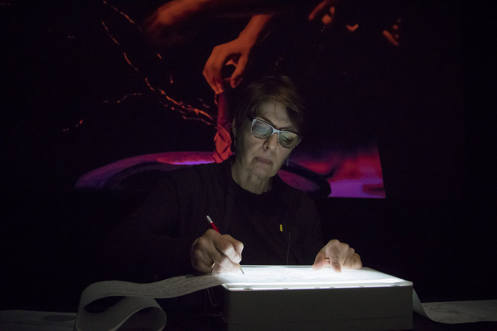 20170111_Fieldwork-Performance-009.jpg