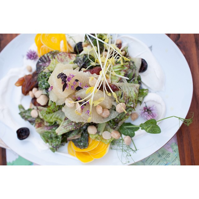 Home Kitchen Culture nails the category of beautiful wedding food. #beautifulfood @leamariedennis #salad #weddingfood #sandiegowedding #edibleflowers #southerncaliforniawedding #foodlove
