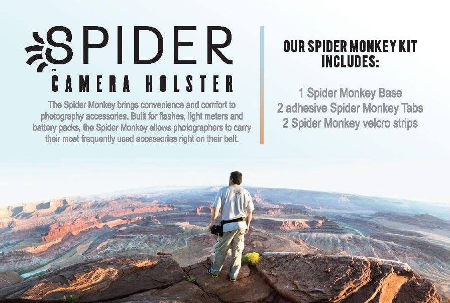 Spider.front.jpg