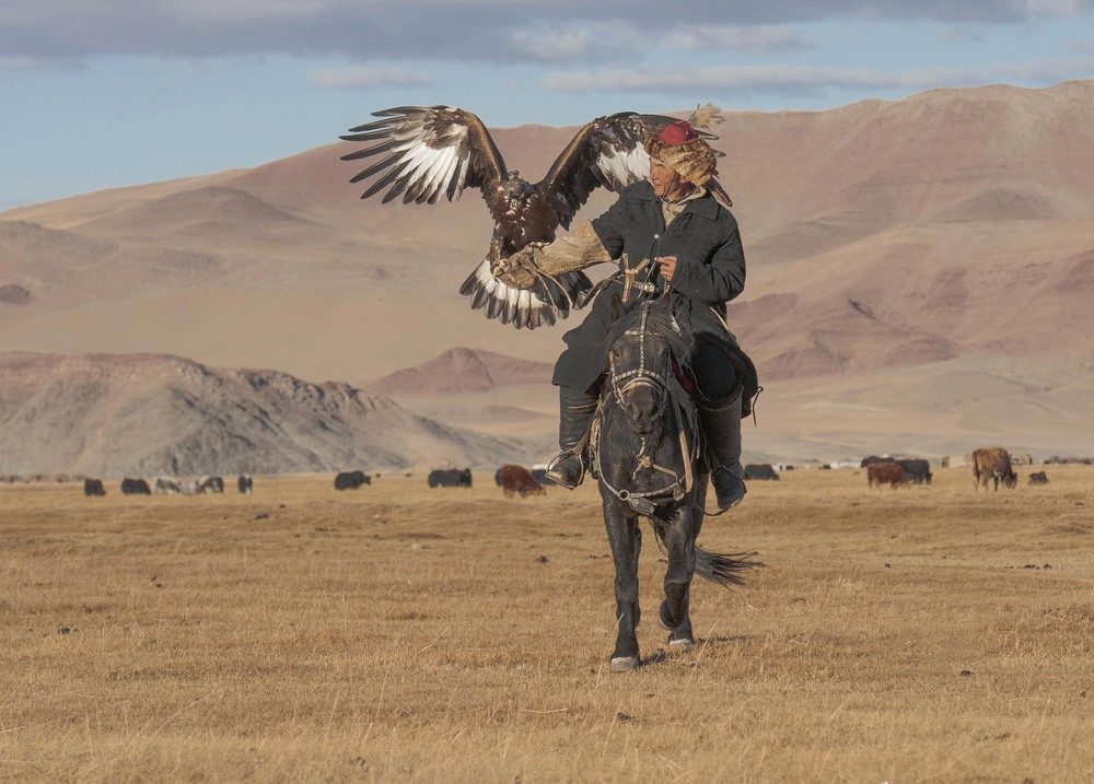 kazakh eagle hunter on horseback.jpg