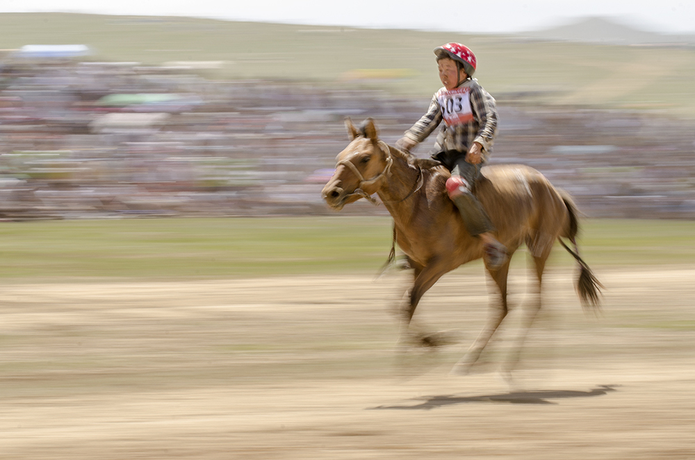 five year old race at the naadam festival.jpg