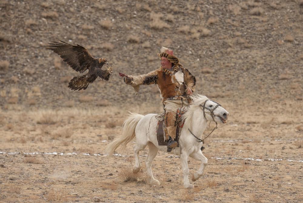 mongolia golden eagle festival.jpg