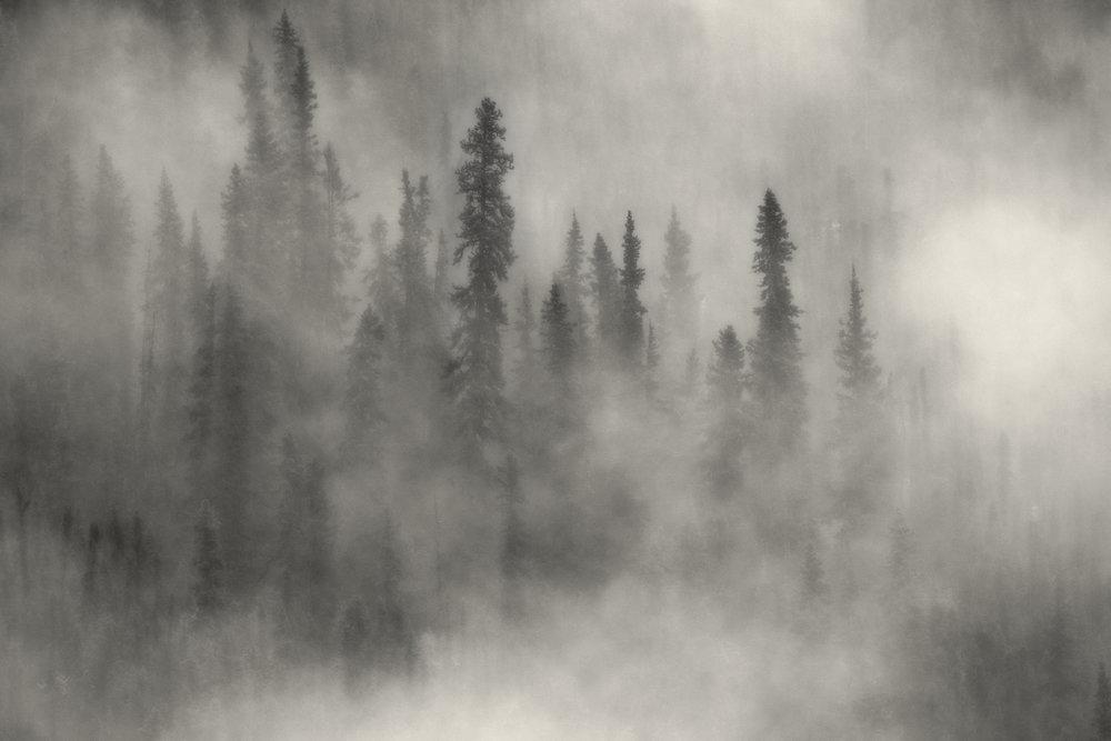 foggy am yukon darker.jpg