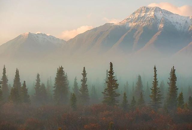 The fog lifts in the valley at first light along the Alaska Hwy in Yukon. #opcmag #becausecanada #sharecangeo #oh_canada_ #canada150 #yukon #yukonbuilt #travelyukon #alaskahighway