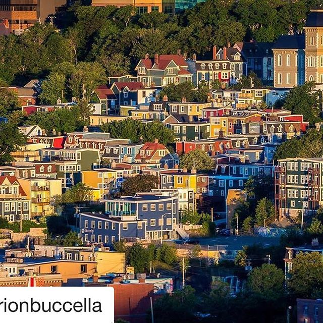 St. John's the capital of Newfoundland offers many picturesque scenes just as @marionbuccella has captured. Images like this can be taken from signal hill with a telephoto lens. Thank you for sharing this great image with us.  If you would like to be a featured artist please remember to tag your images #n49share