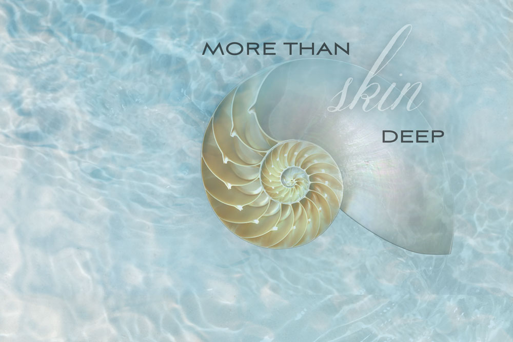 Nautilus_Shell_Water_WebSliderHome.jpg