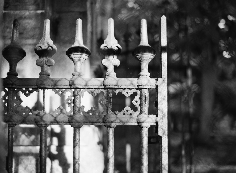 Day 109 - September 17, 2016  Contax 645 | Kodak Tri-X 400   I love every detail of the cemetery. This is part of the entrance gate and I often wonder exactly how old this beautiful gate is.
