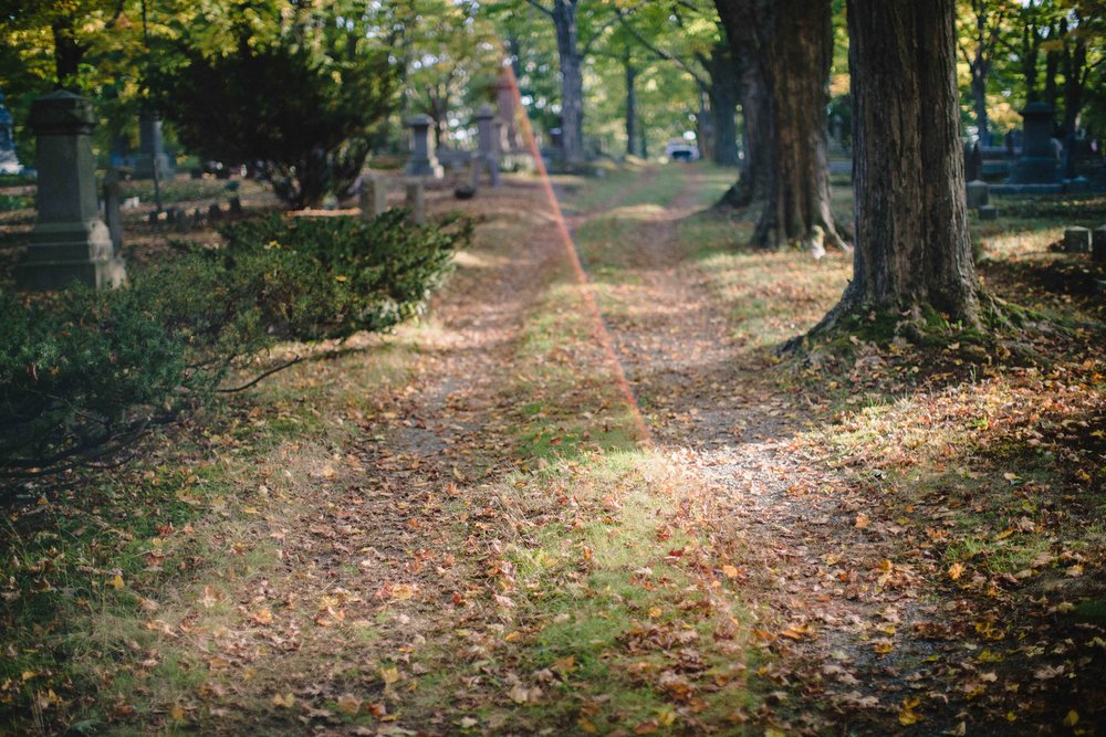Day 128 - October 6, 2016  I'm trying to soak up each walk in the cemetery this fall. It is just so beautiful and magical in here this time of year!