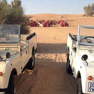 Naamloos-1_0001_dubai desert safari 1.jpg