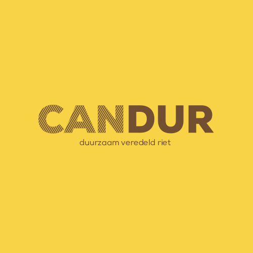 candur.png