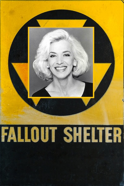 fallout-shelter-olivier-le-queinec.jpg