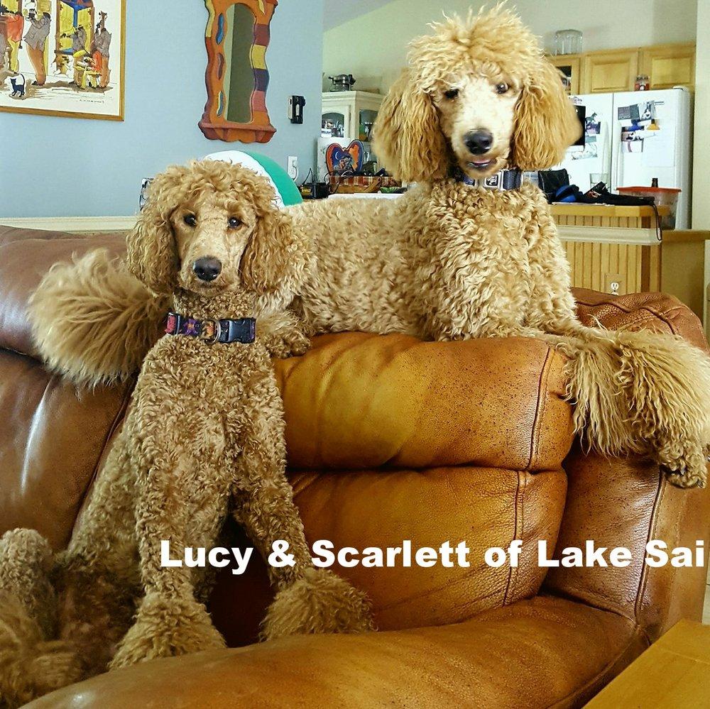 Lucy & Scarlett
