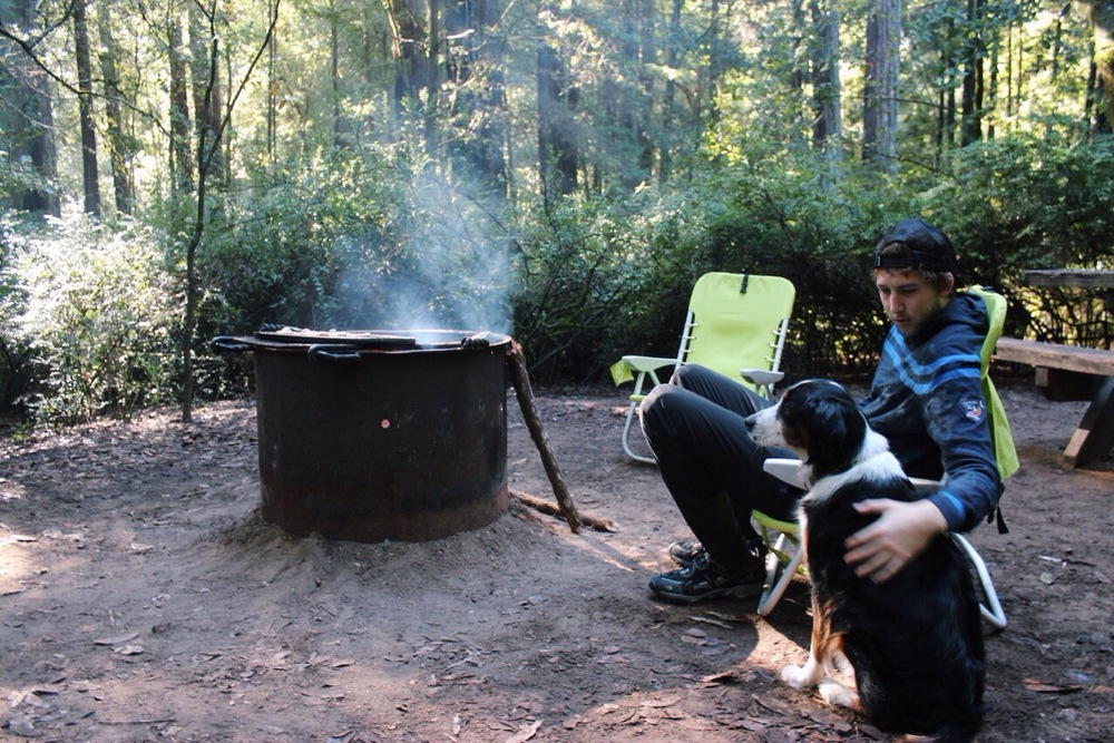 Man and Dog Camping Big Basin