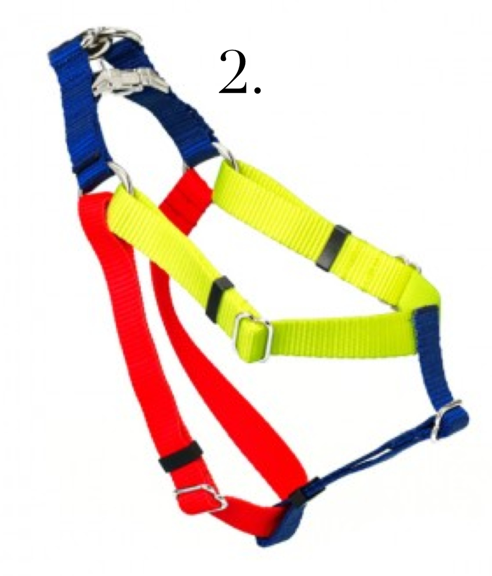 colorblock_harness.png