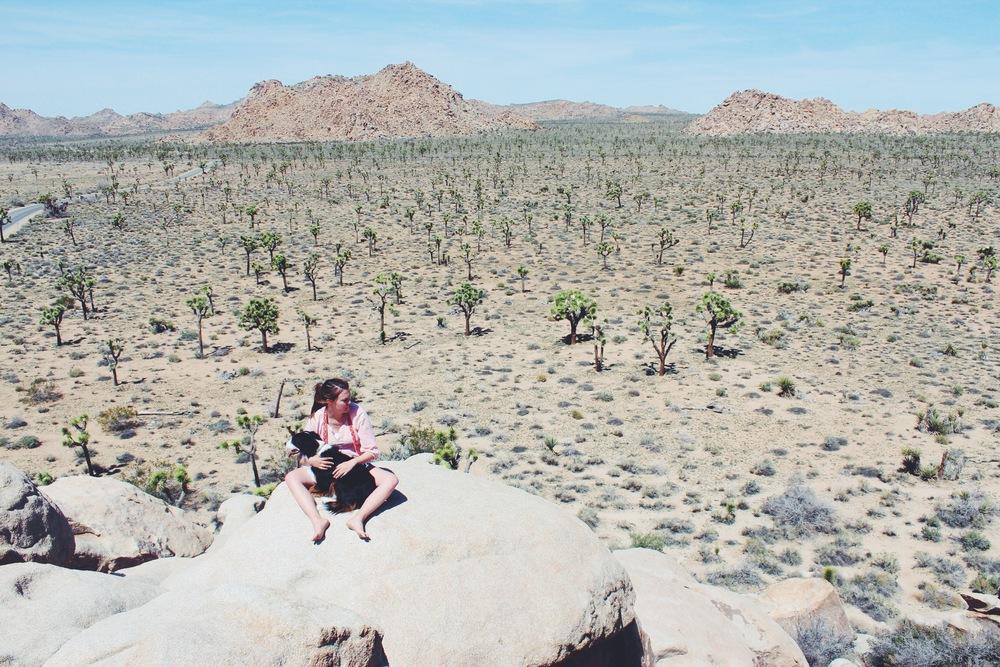 Joshua Tree Rock Piles