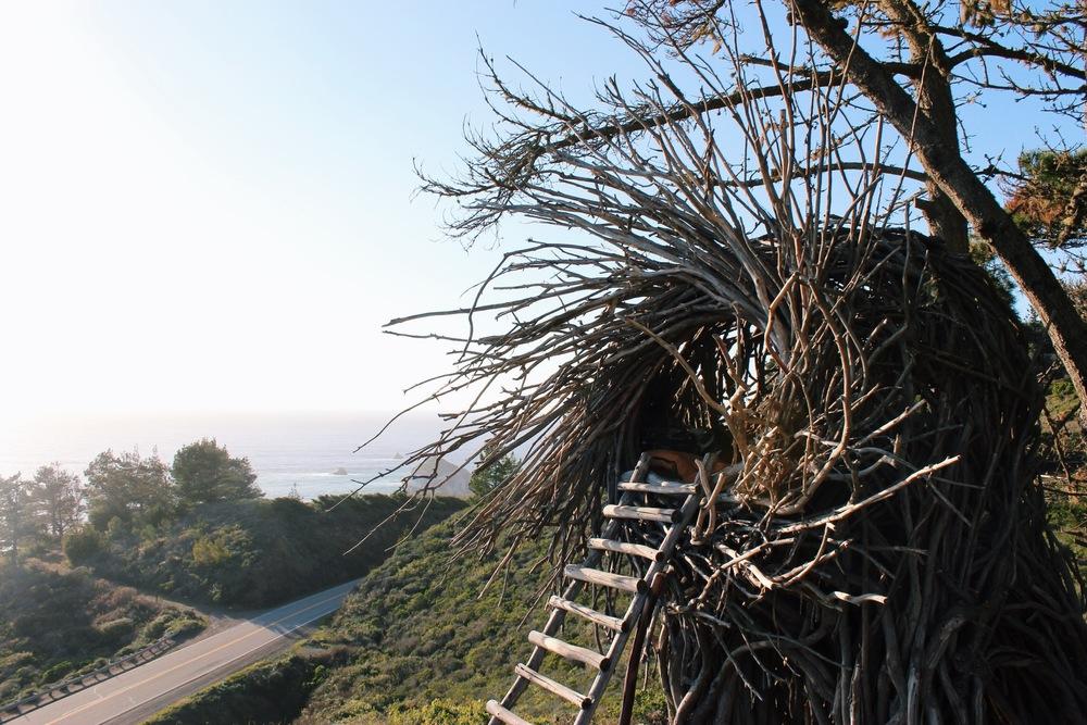 Treebones Resort Human Nest