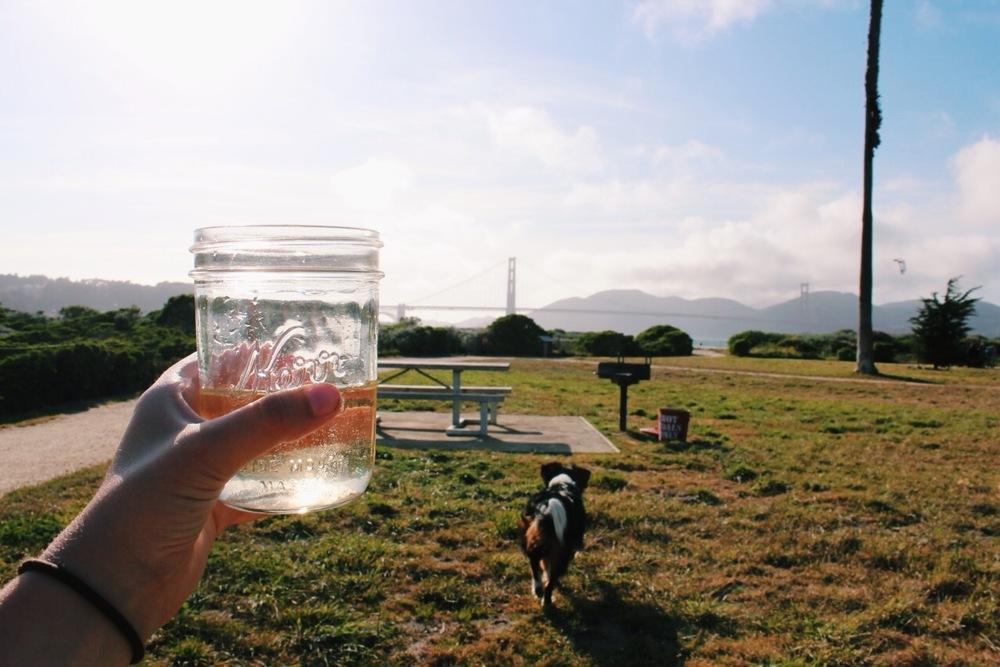 Crissy Field San Francisco
