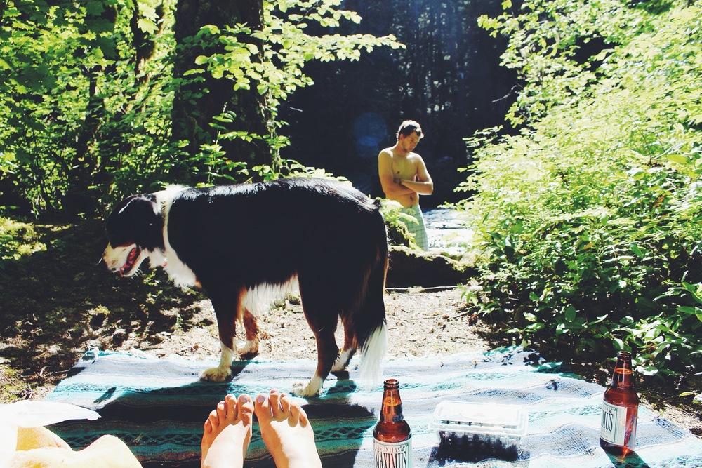 Camping McKenzie River