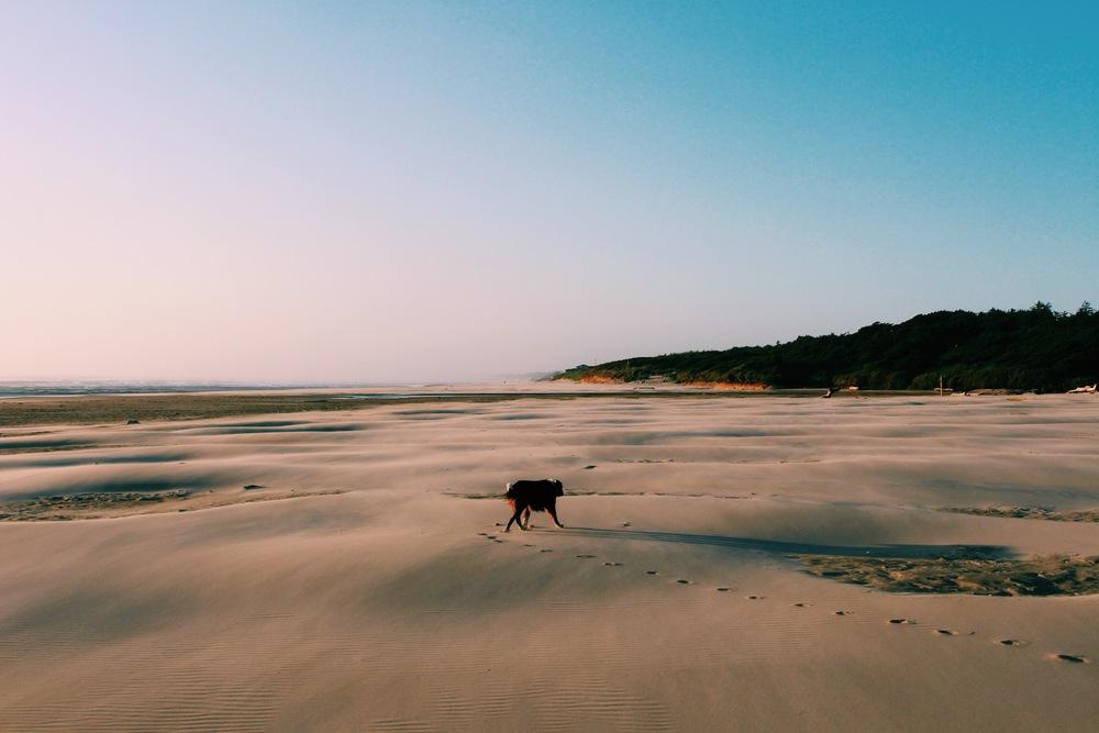 Oregon Beach