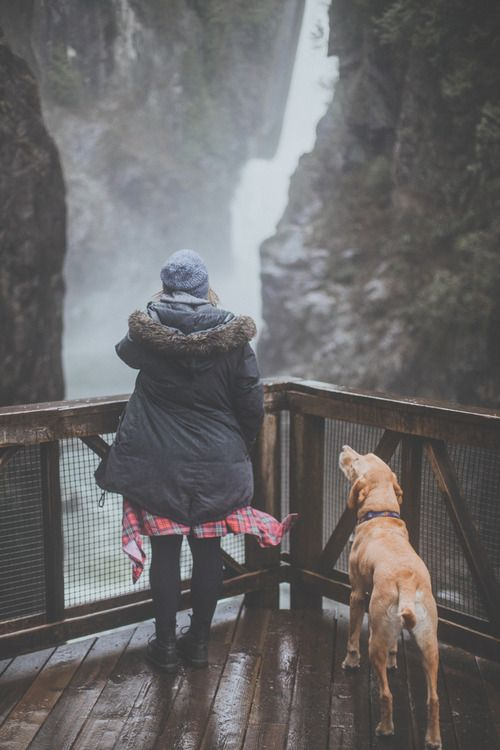 Waterfall and Dog