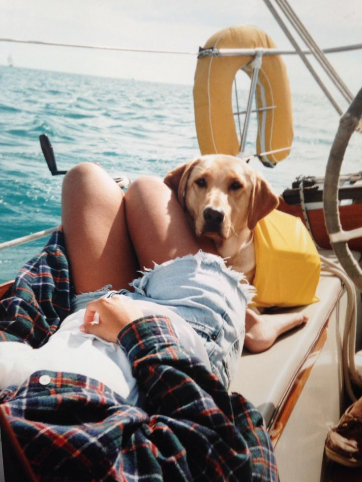 Sailing with Dog