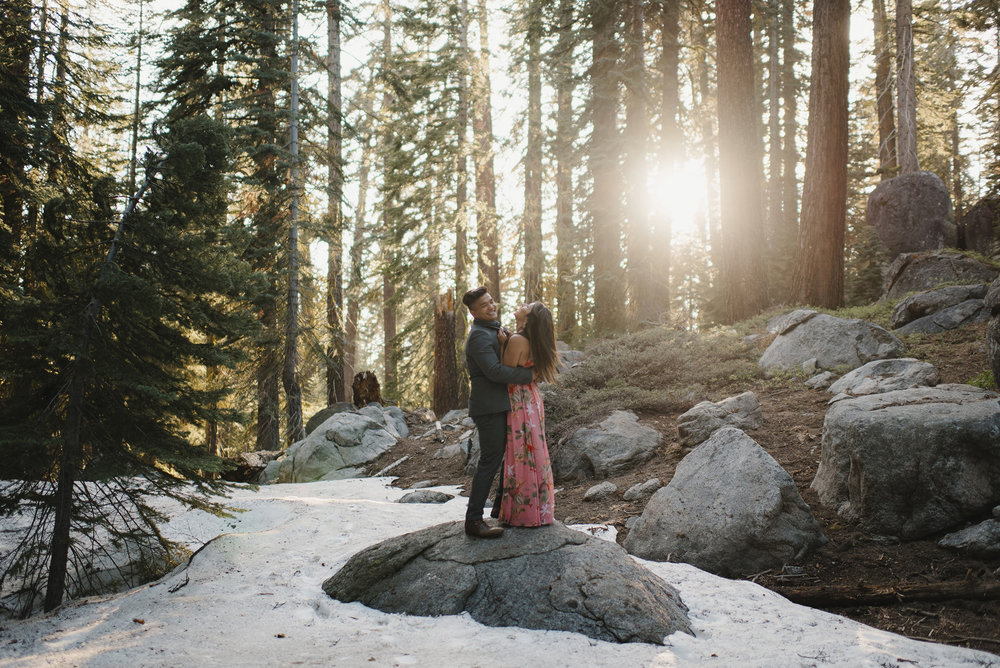 Couple laughs as the sun comes through the pine trees during Engagement Session in Yosemite