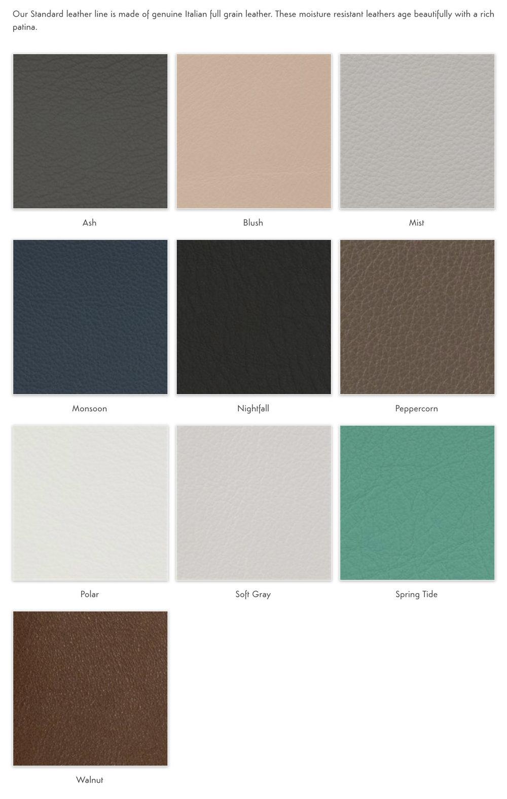 standard leather.jpg
