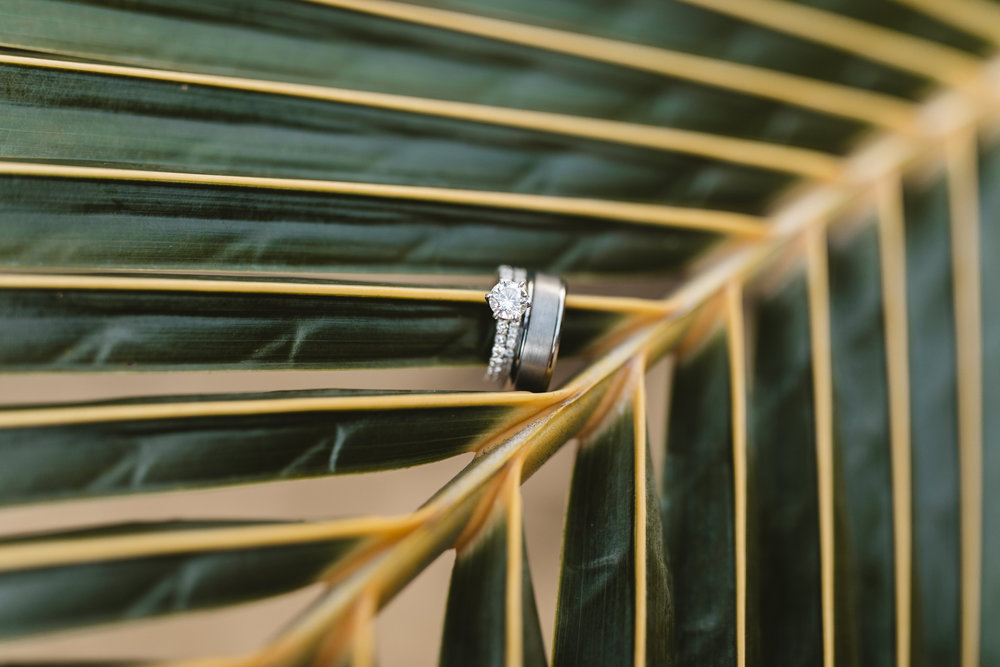 Kauai Wedding Rings Bridal Details by Hawaii Elopement Photographers Colby and Jess