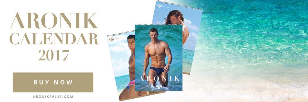 Aronik Calendar 2017