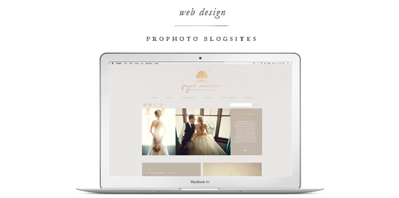ProPhoto Custom Blogsite Design