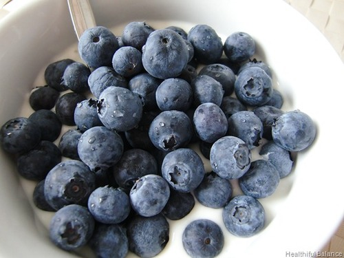 Blueberries & Yogurt