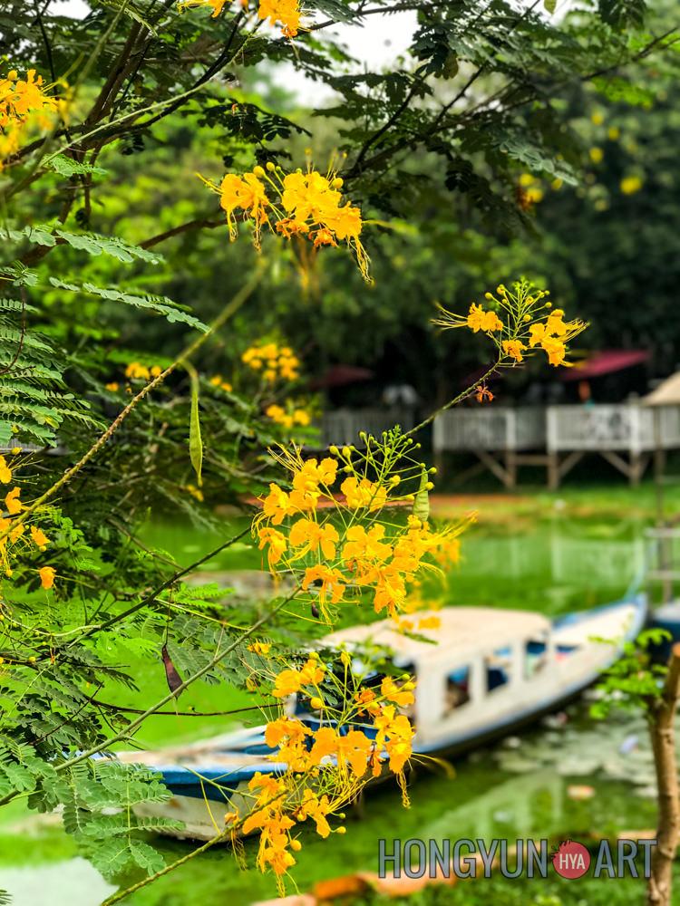 201704-Hongyun-Art-Myanmar-SpringBreak-231.jpg