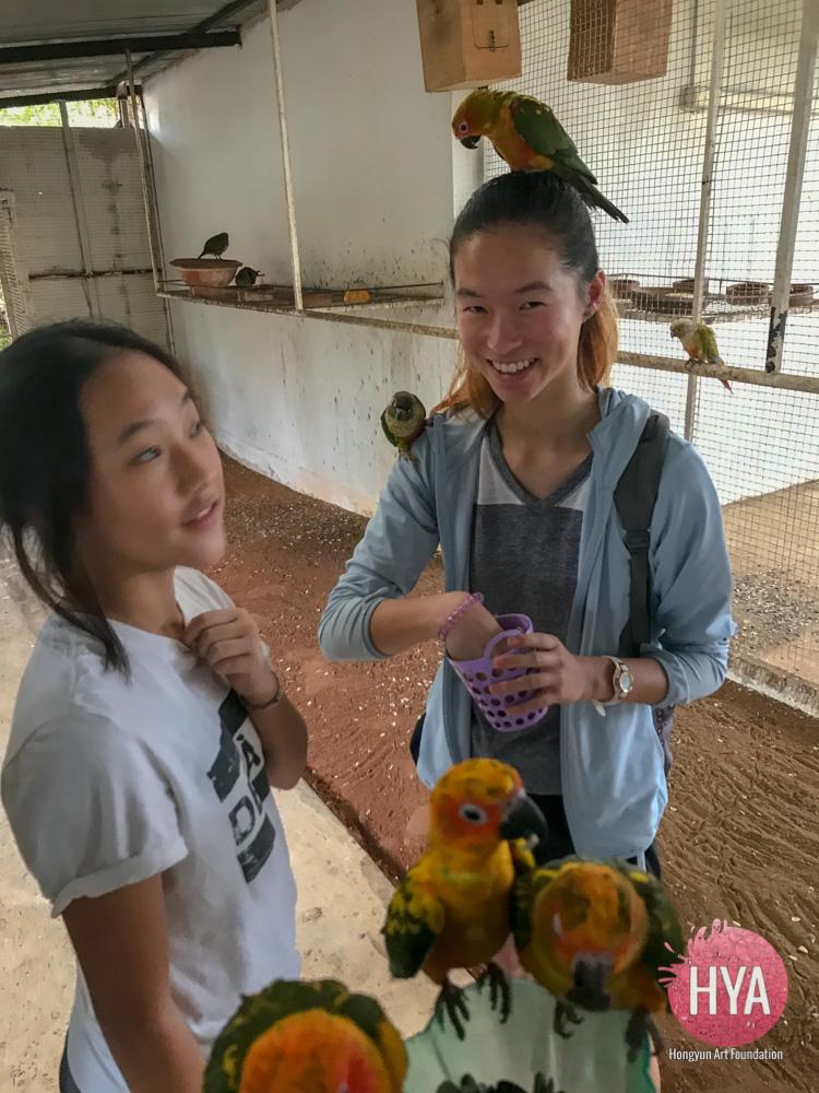 Hongyun-Art-201712-Myanmar-TEP-710.jpg