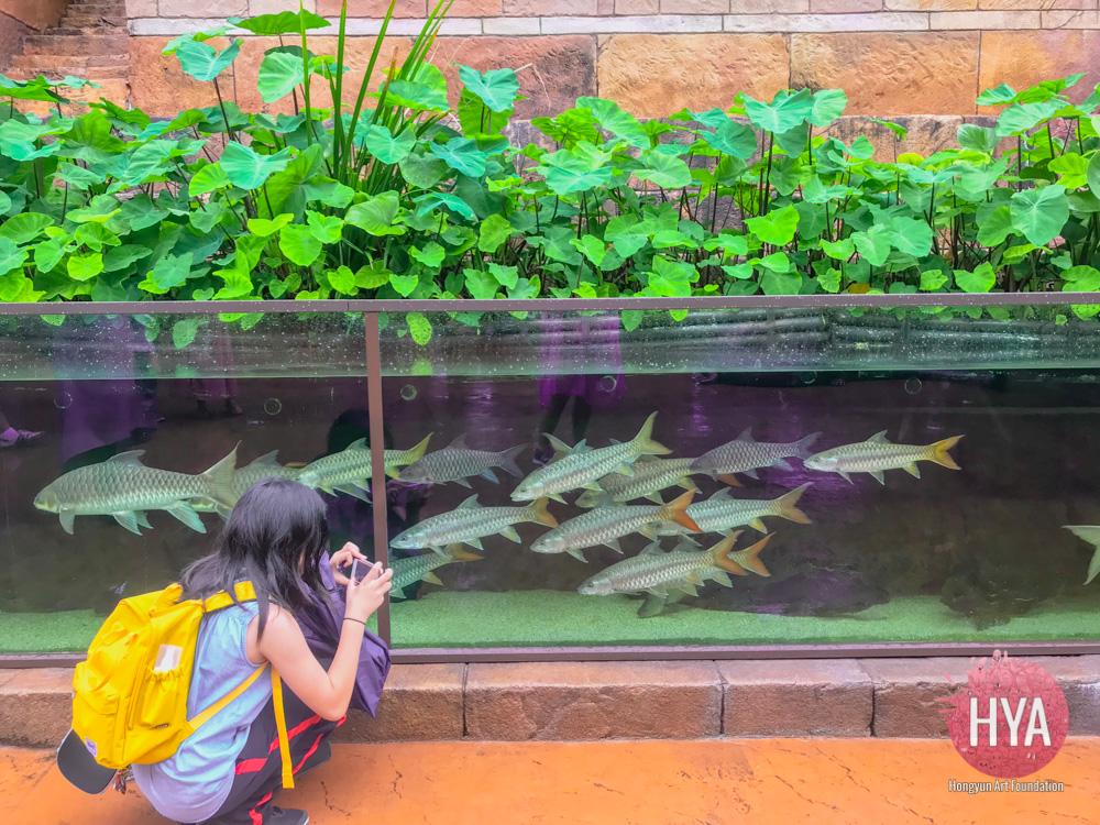 Hongyun-Art--Singapore-International-Summer-Camp-068.jpg