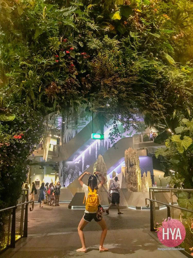 Hongyun-Art--Singapore-International-Summer-Camp-163.jpg