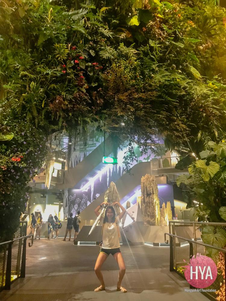 Hongyun-Art--Singapore-International-Summer-Camp-164.jpg