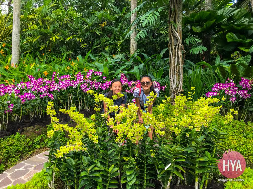 Hongyun-Art--Singapore-International-Summer-Camp-248.jpg