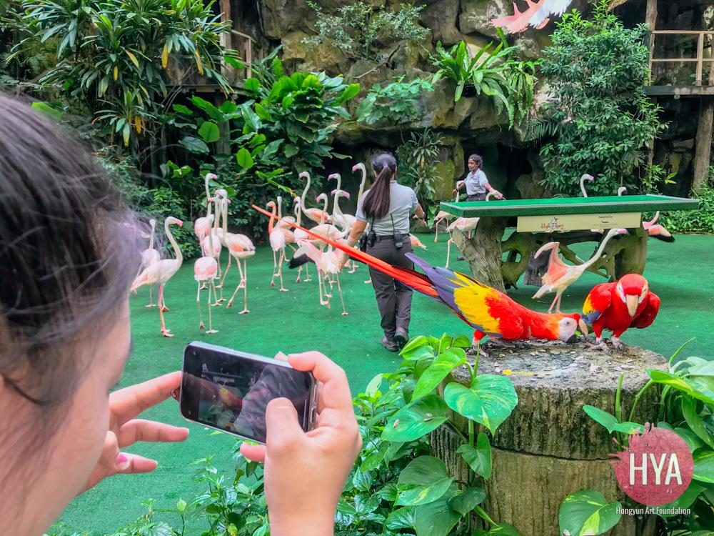 Hongyun-Art--Singapore-International-Summer-Camp-315.jpg