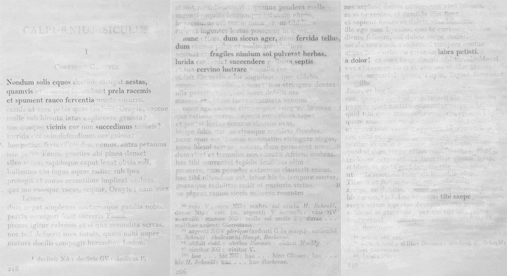 Excerpt from Calpurnius Siculus' Eclogues