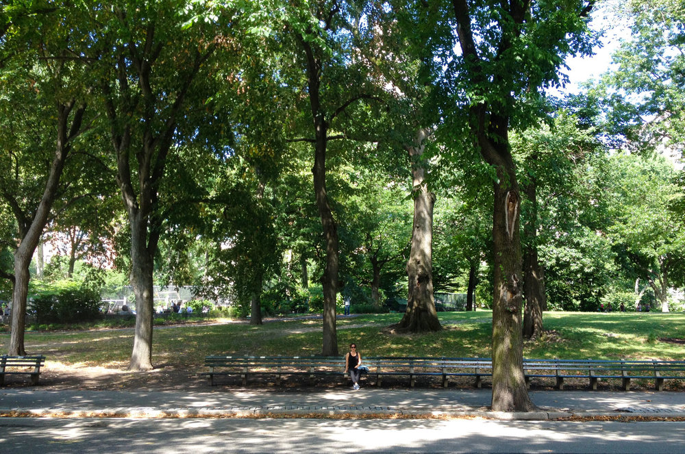 Year Round Co. in Central Park