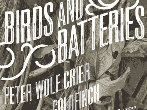 poster design for birds and batteries
