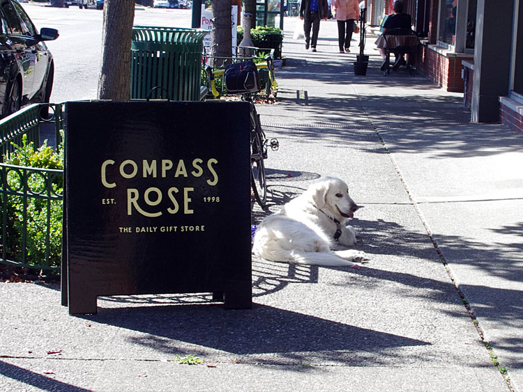 compass rose storefront